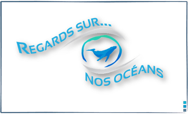 Large_regards_sur_nos_oceans