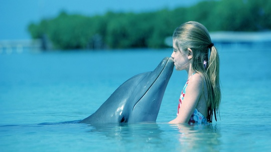 Kid-dolphin-kiss
