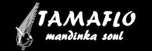 Tamaflo-banner1
