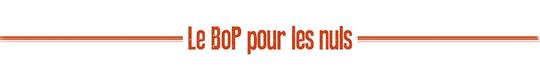 Pour_les_nuls_orange