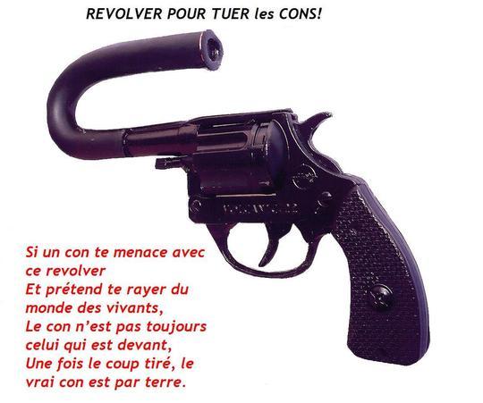 R_volver_pour_tuer_les_cons