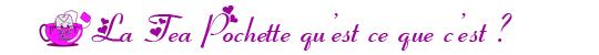 Qu_est-ce-que-c_est-la-tea-pochette