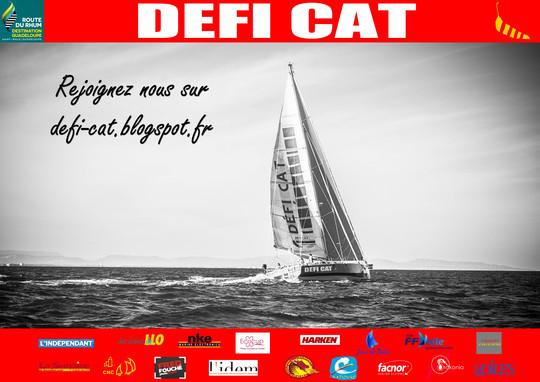 Affiche_defi_cat_33