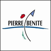 220_220_1-logo_pierre_benite_carre