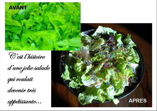 Salade_app_tissante