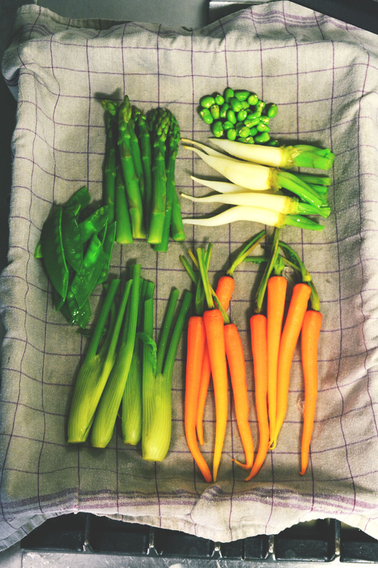 Legumes_web