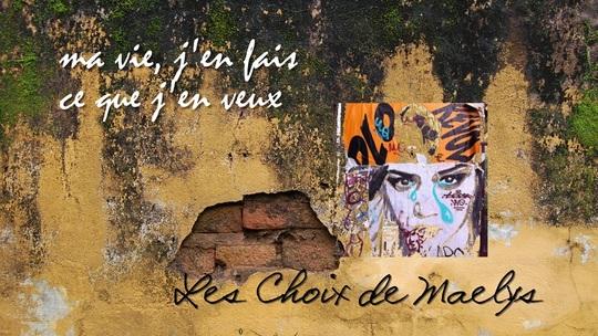 Les_choix_de_maelys_-_poster_teaser_1