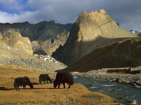 Stage-carnet-de-voyage-ladakh-inde