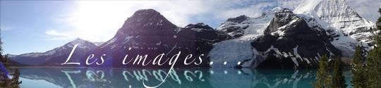 Les_images