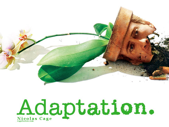 Adaptation1_1024__1_