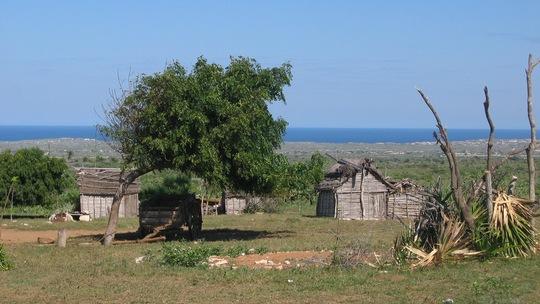 Madagascar_100_1_