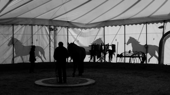 Dressage_cheval