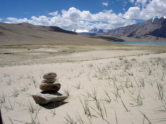 Ladakh-changtang1