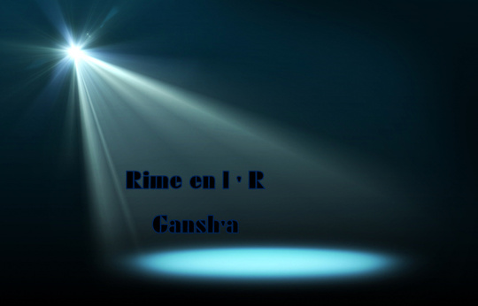 Fond_toile_rime_en_l_r
