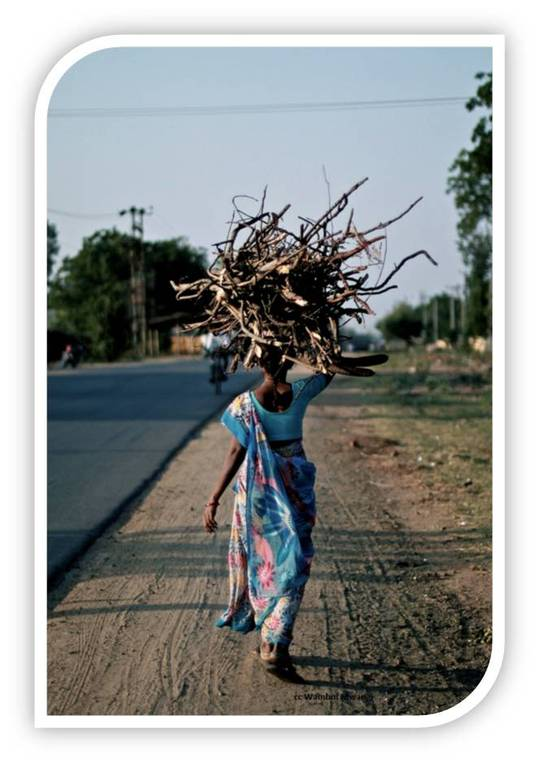 Woman_carrying_firewood_small