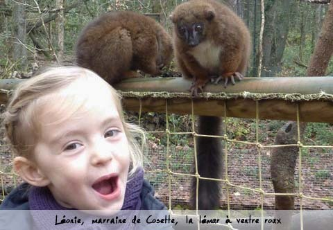 Kkbb_l_onie_et_lemur_2