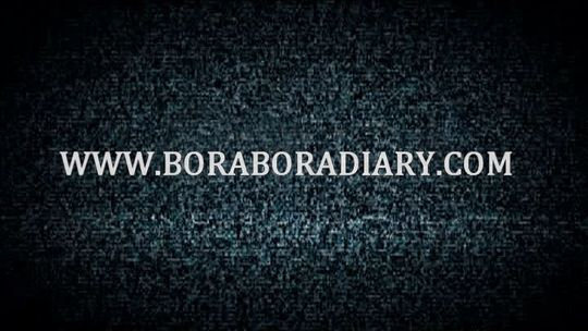 Logowwwboraboradiary
