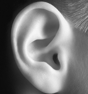 Ear-e1318509822331