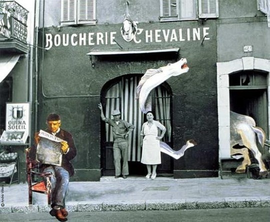 Boucherie_chevaline_collage