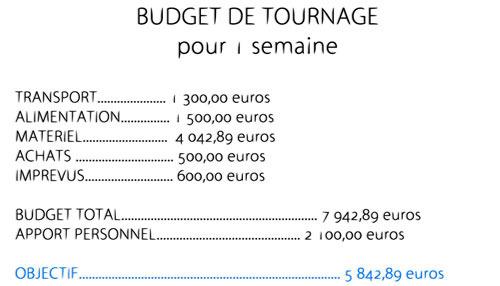 Budget2811-3