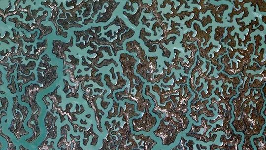 369845-google-earth-fractals