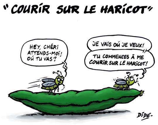Courir_sur_le_haricot__r_duit