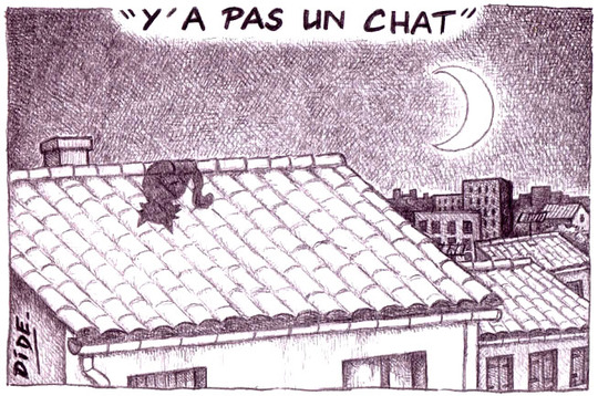 Y_a_pas_un_chat__2__version_r_duite_