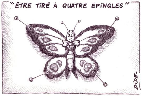 Etre_tir____4__pingles__r_duit_