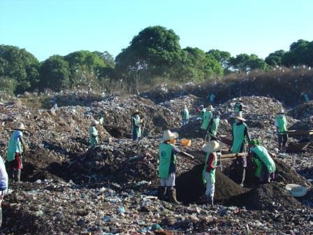Activit_s-compostageweb2