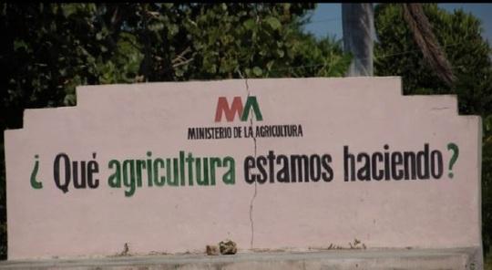 Qu_agriculturaestamoshaciendo