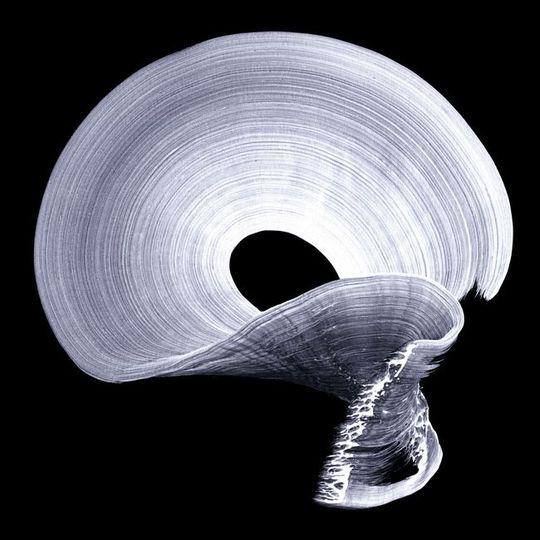 92076_1318340747_najia-mehadji-danse-mystique-3-2011-epreuve-numerique-pigmentaire-160x160-cm-courtesy-galerie-shart-casablanca