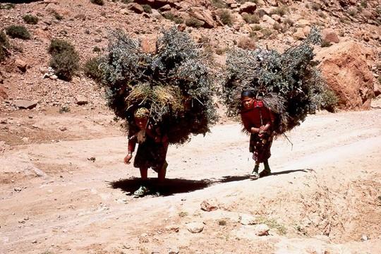 Maroc_haut_atlas_dur_travail1
