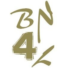 Logo_bn4l