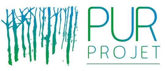 Logo-pur-projet-hd