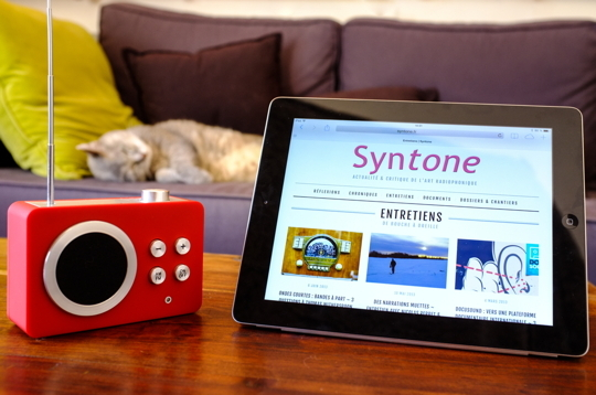 Syntone_cat_2_petit