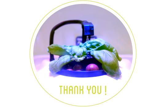 Thankyou-01