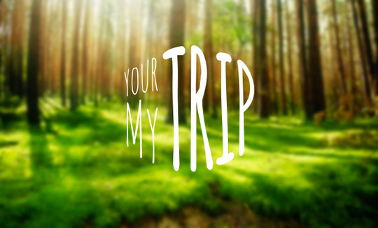 Yourtrip2