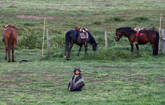 Indien-mapuche-chili_pics_809
