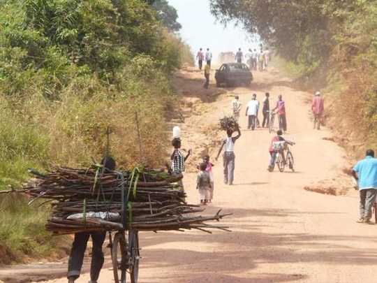 Congo_road_to_village