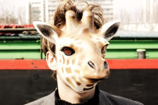 Girafe_hd