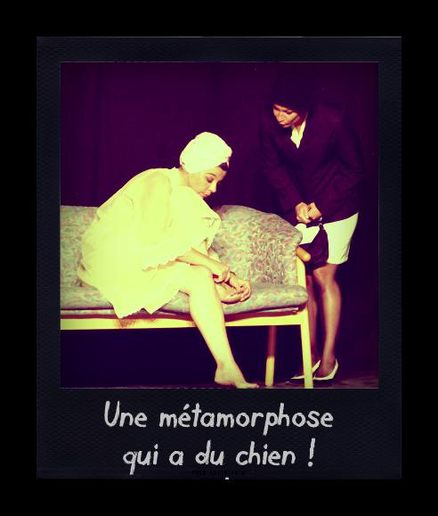 La_m_tamorphose_pola_20110901213202_