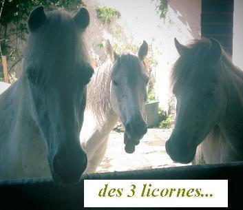 Les_trois_gr_ces