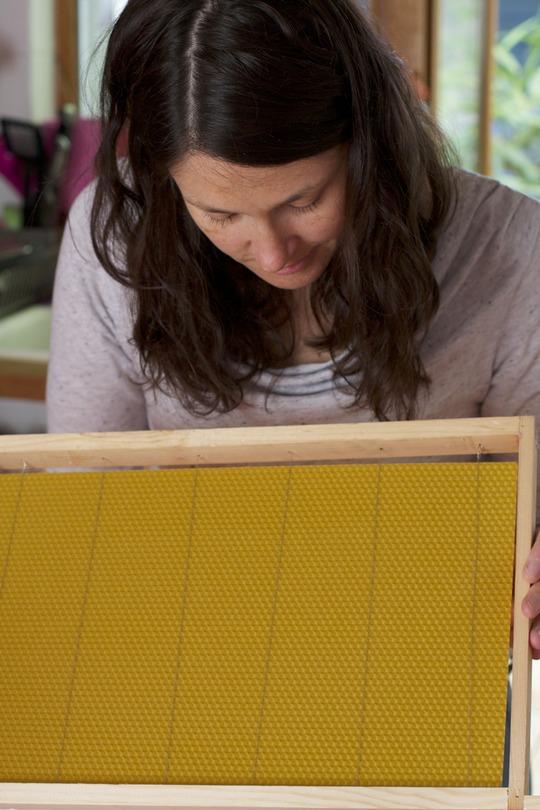 Préparation d'un cadre de ruche