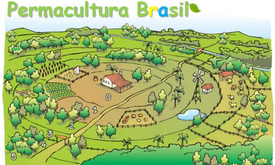 Permacultura_brasil34