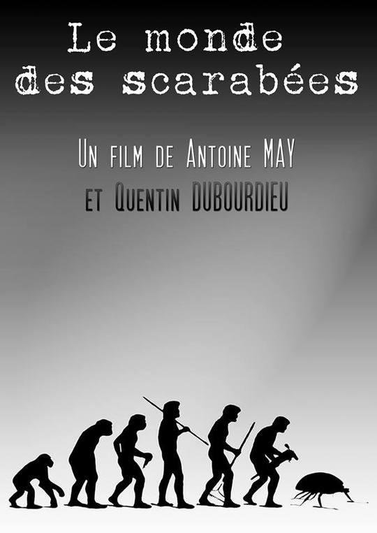 Le_monde_des_scarab_es