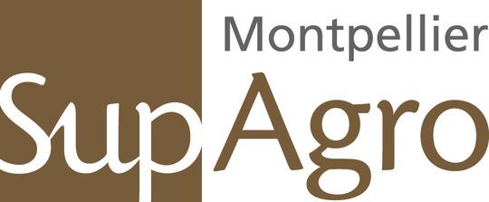 Logogenerique2010
