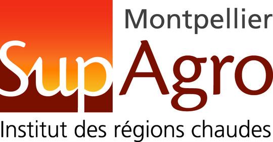 Logogenerique_irc_2010