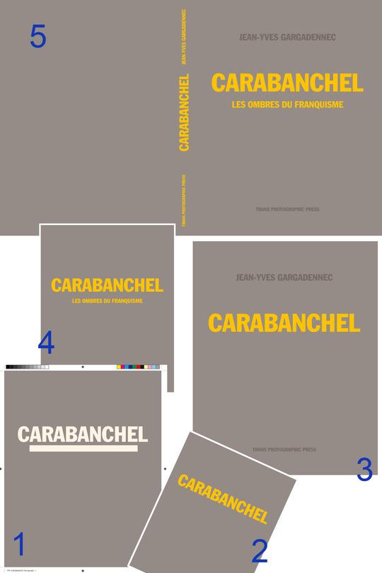 Actualit_s_couverture_carabanchel_gargadennec