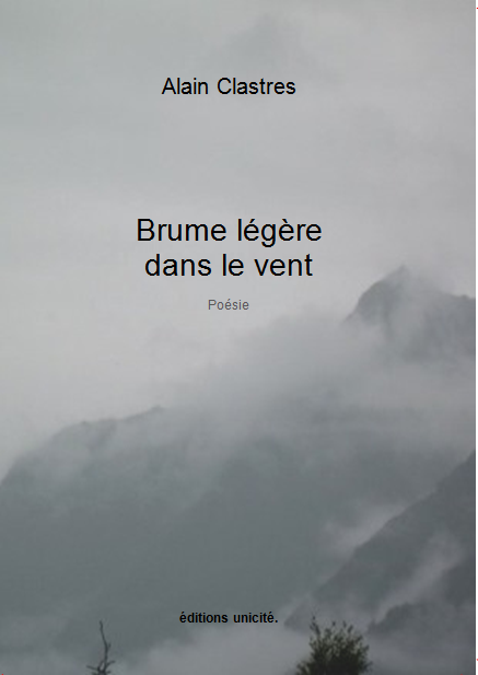 Couv_brume_l_-_g_-_re