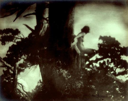 Anne_brigman_-_the_pine_sprite